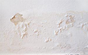 תיקון רטיבות בקירות חיצוניים